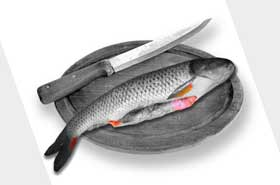 рыбнач кухня блюда из рыбы