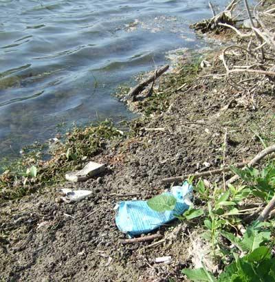 кто должен убрать мусор на берегу